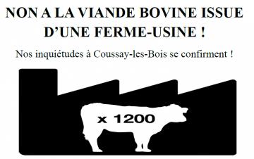 Mobilisation Non à la viande bovine de la ferme usine
