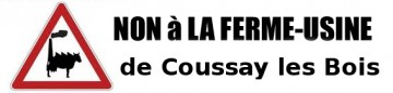 Ferme de mille taurillons à Coussay-les-Bois