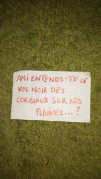Amiens: dans quelques jours le procès d'une manifestante, militante UEC, qui risque 5 ans de prison.