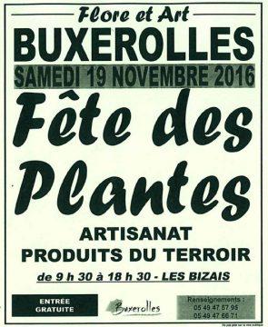 Fête des plantes à Buxerolles