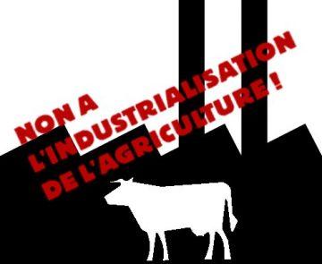 A Coussay-lès-Bois, mobilisation contre une ferme-usine censée accueillir 1 200 taurillons