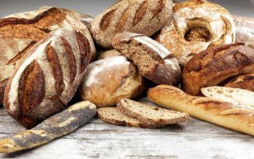 le pain, du champs à l'assiette : alimentation, agriculture, société @ Dangé-Saint-Romain   Nouvelle-Aquitaine   France